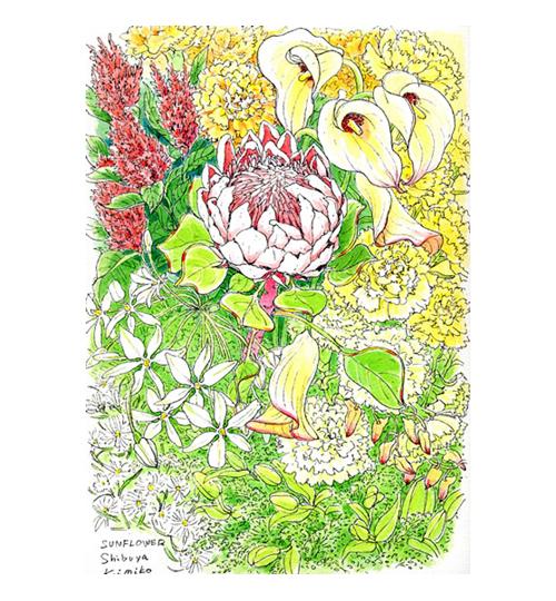なんて大きな花。両手に収まらないほどのキングプロテア。ふっくらとした形と繊細な産毛に覆われた花弁。何も考えず、花だけを見てペンを動かす。