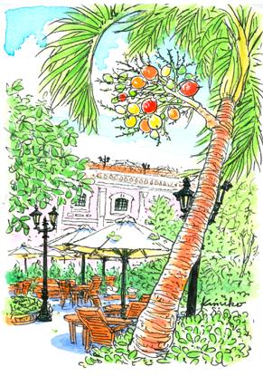 ベトナム・フエのホテルの中庭で見つけた、カラフルな実をつけた椰子の木。プラスティックのようにぴかぴかしている。庭の手入れをしている人が名前を教えてくれたが、どうにも聞き取れない。