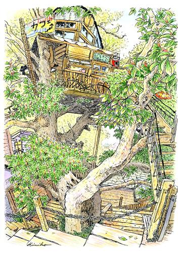 春風に誘われてツリーハウスのカフェに出かけました。風が吹くと大きなタブの樹がゆっくりと揺れています。私も樹のリズムと一緒に呼吸していました。