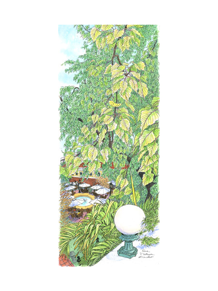 ホテル・ サイゴン・モリンの中庭の大きなガジュマルの樹。風を受けて樹全体がゆったりと揺れる。描いている私も揺れる。時折ぱらぱら通り雨。その度私も雨宿り。