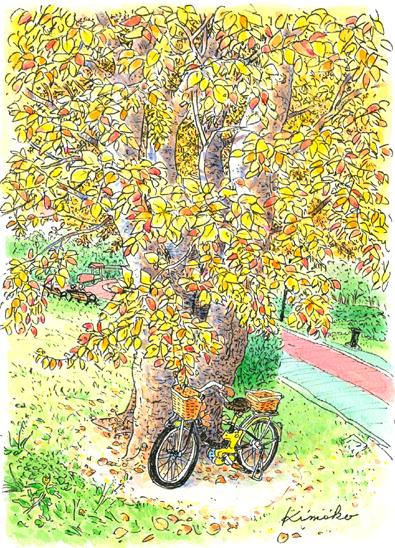 西東京市・憩いの森公園。明るい秋の日、一本の木の下に自転車が停めてある。何でもない日の何でもない光景。秋の光がそれを特別大切なものに感じさせる。