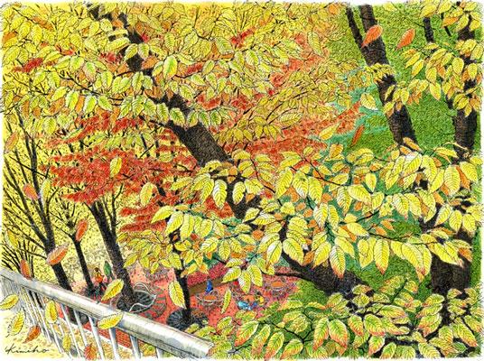 新宿三井ビル前のケヤキが色づいた。葉っぱ 葉っぱ ひたすら葉っぱを描く。どこまでも黄色い葉の重なり。風が吹くたび、逆光の中をぱらぱらと落ちてくる。2週間後、葉が落ちて、すっかり冬の樹になっていました。