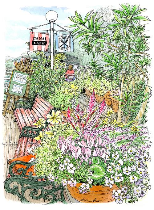 爽やかな風が吹く秋の一日。久しぶりに訪れたカナルカフェ。デッキのベンチには赤いブランケット。鉢植えのコスモスと細いケイトウが静かに揺れていました。