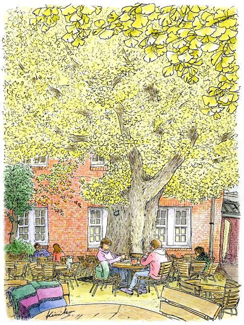 秋の立教大学。蔦の絡まる赤レンガの建物。中庭に一対の銀杏の木。学生たちに混ざり椅子に座ると、大きく枝を広げる銀杏が視界いっぱいに広がりました